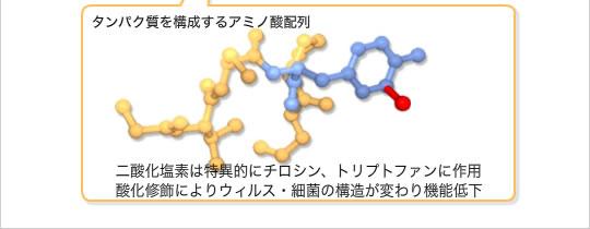 タンパク質を構成するアミノ酸配列